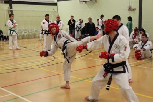 blackbelt sparring